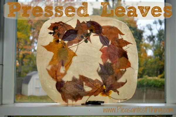 How to Press Leaves with Kids from The Pleasantest Thing at B-InspiredMama.com