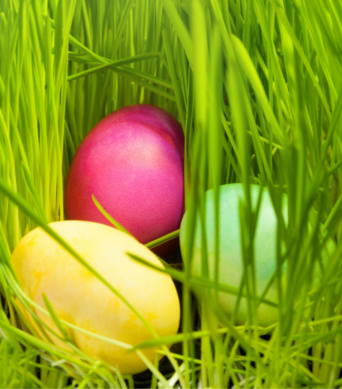 Fun Easter Family Traditions - From the Mouths of Moms - at B-Inspired Mama