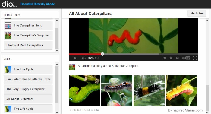 Butterfly Life Cycle Learning with Caterpillar Videos and Photos from dio and B-InspiredMama.com