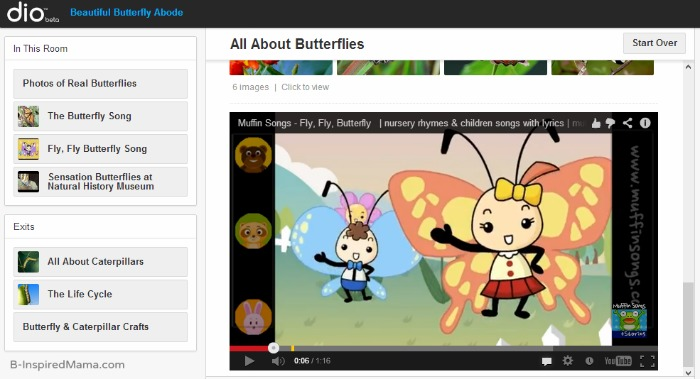 Butterfly Life Cycle Videos and More with dio at B-InspiredMama.com