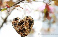 DIY Bird Feeder Heart from Plain Vanilla Mom at B-InspiredMama.com