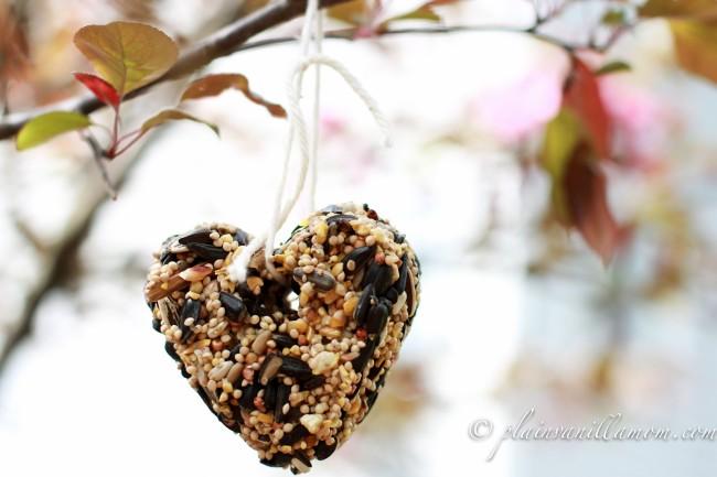 DIY Bird Feeder Heart from Plain Vanilla Mom at B-InspiredMama.com
