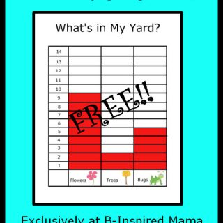 What's In My Yard Kids Graph Printable from Preschool Powol Packets at B-InspiredMama.com
