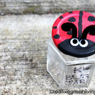 Kids Ladybug Bug Jar Craft from Creative Green Living at B-InspiredMama.com