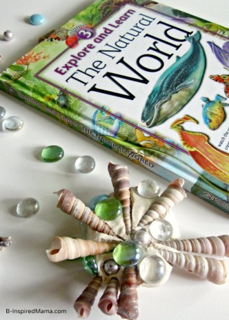 A Sensory Seashell Craft for Kids at B-InspiredMama.com