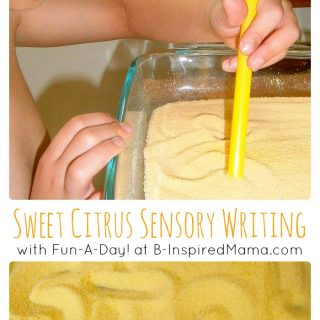 A Sweet Citrus Sensory Tray at B-InspiredMama.com