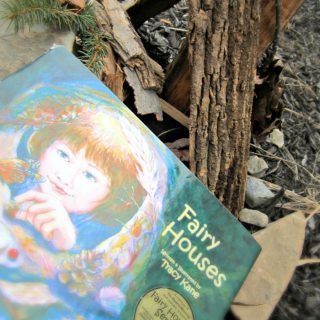 Kids Fairy Play and Books