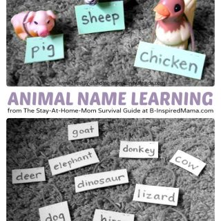 Using Animal Name Tags for Learning Animal Names at B-InspiredMama.com