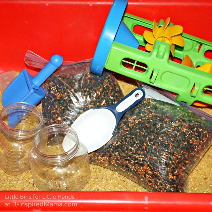 Bird Seed Sensory Bin + More Kids Party Activities at B-Inspired Mama
