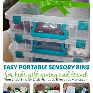 Easy & Portable Sensory Bin Gift Ideas at B-Inspired Mama