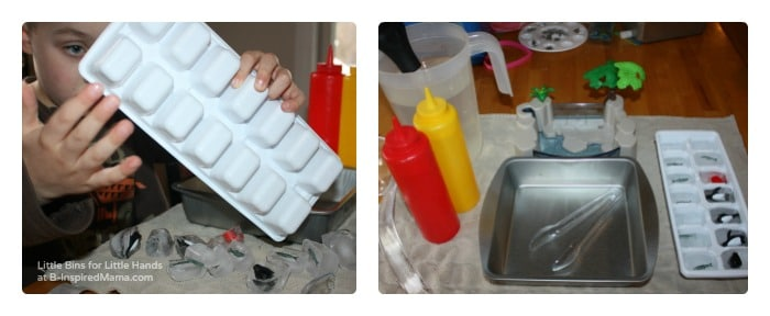 The Setup - Penguin Ice Melt Science for Kids at B-Inspired Mama
