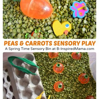 Cute Carrot Patch Sensory Play
