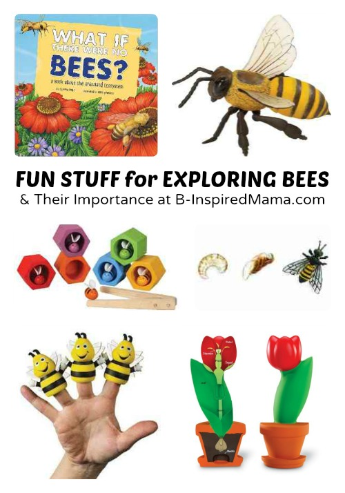 Fun Stuff for Exploring the Importance of Bees with Kids at B-Inspired Mama