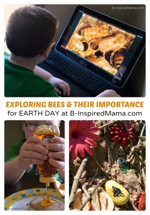 http://b-inspiredmama.com/wp-content/uploads/2014/04/Why-Are-Bees-Important-Play-Learning-Ideas-for-Earth-Day-at-B-Inspired-Mama-300x428.jpg