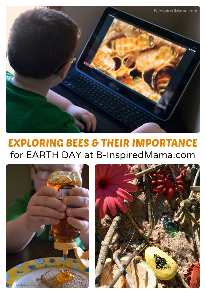 Why Are Bees Important Play & Learning Ideas for Earth Day at B-Inspired Mama