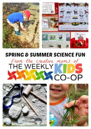 http://b-inspiredmama.com/wp-content/uploads/2014/05/Spring-Summer-Science-for-Kids-+-The-Weekly-Kids-Co-Op-Link-Party-at-B-Inspired-Mama-300x428.jpg