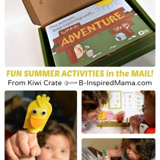 Fun Summer Activities Right in the Mail!