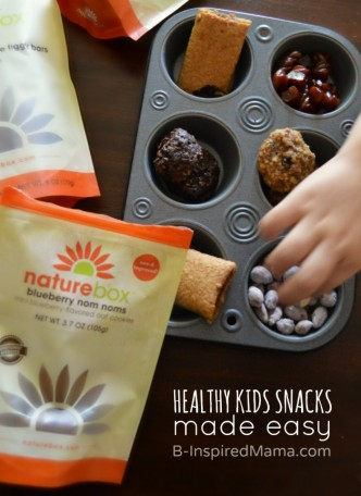 Healthy Kids Snacks Made Easy - #sponsored #natureboxsnacks #clevergirls at B-Inspired Mama