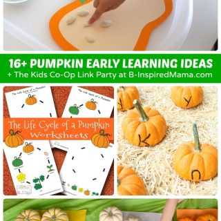 16+ Pumpkin Themed Early Learning Ideas for Preschoolers