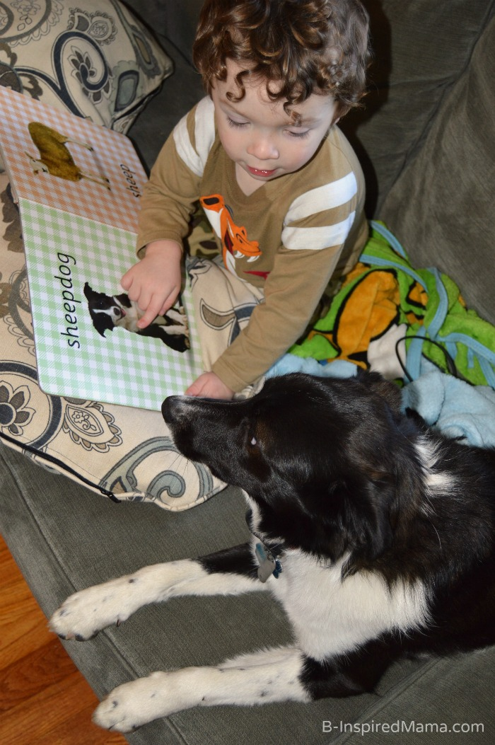 J.C. Reading to Olive + Life Lessons for Kids from their Pets [#sponsored #SwifferEffect] at B-Inspired Mama