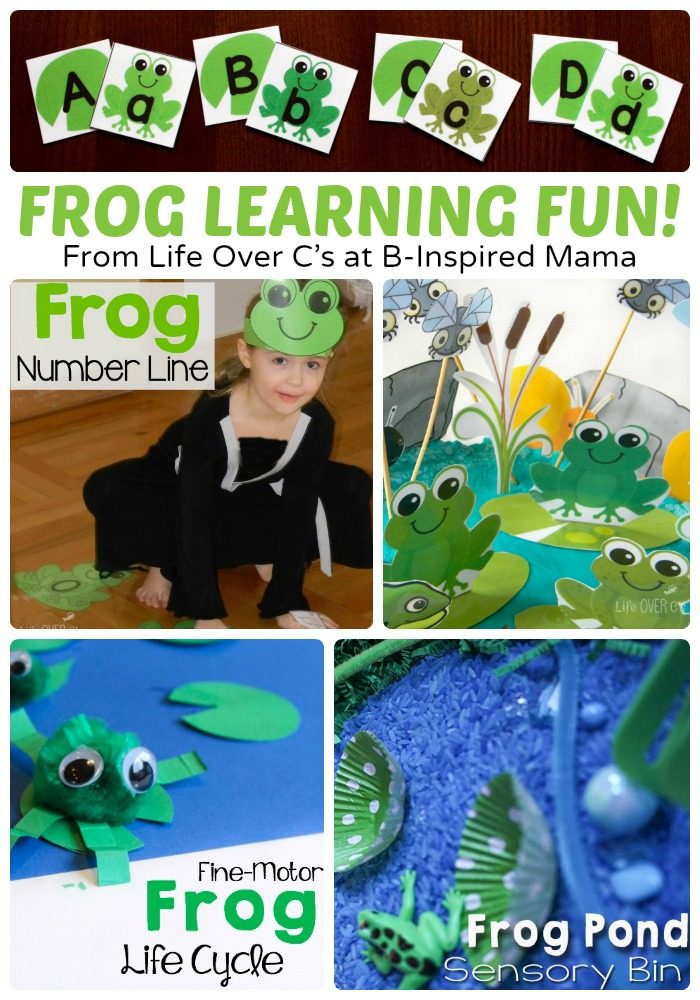Frog Themed Learning and Alphabet Activities + Free Alphabet Activity Cards, too!