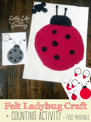 Felt Ladybug Craft and Activity