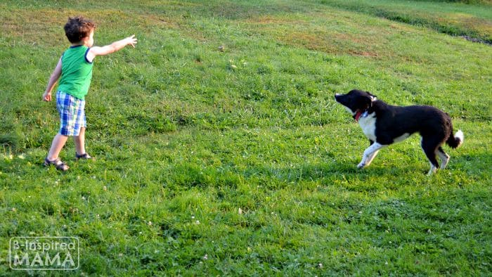 39 Dog Names and How Families Picked Them - JC Playing Fetch with Olive at B-Inspired Mama