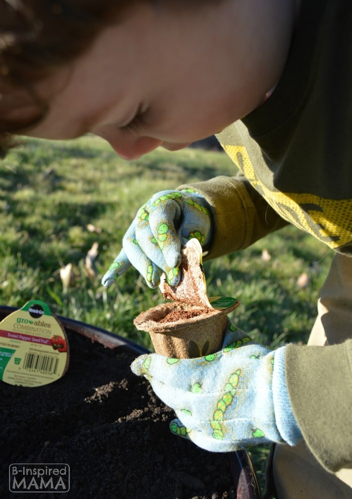 Planting a Pizza Garden in a DIY Pizza Garden Planter - JC Prepping his Gro-able Seed Pod - at B-Inspired Mama