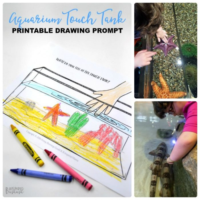 Touch Tank Drawing Prompt for Kids + Our Awesome Family Trip to Adventure Aquarium - at B-Inspired Mama