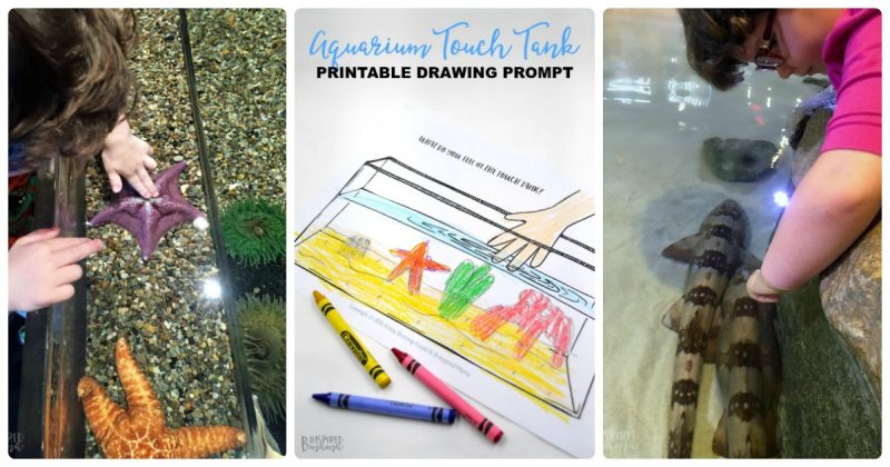 Fun Touch Tank Drawing Prompt For Kids Our Adventure